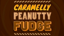 Caramelly Peanutty Fudge