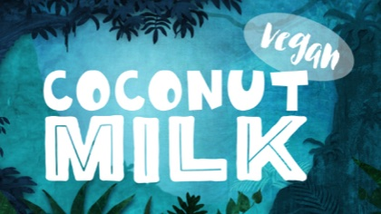 Coconut Milk Vegan Ice Cream